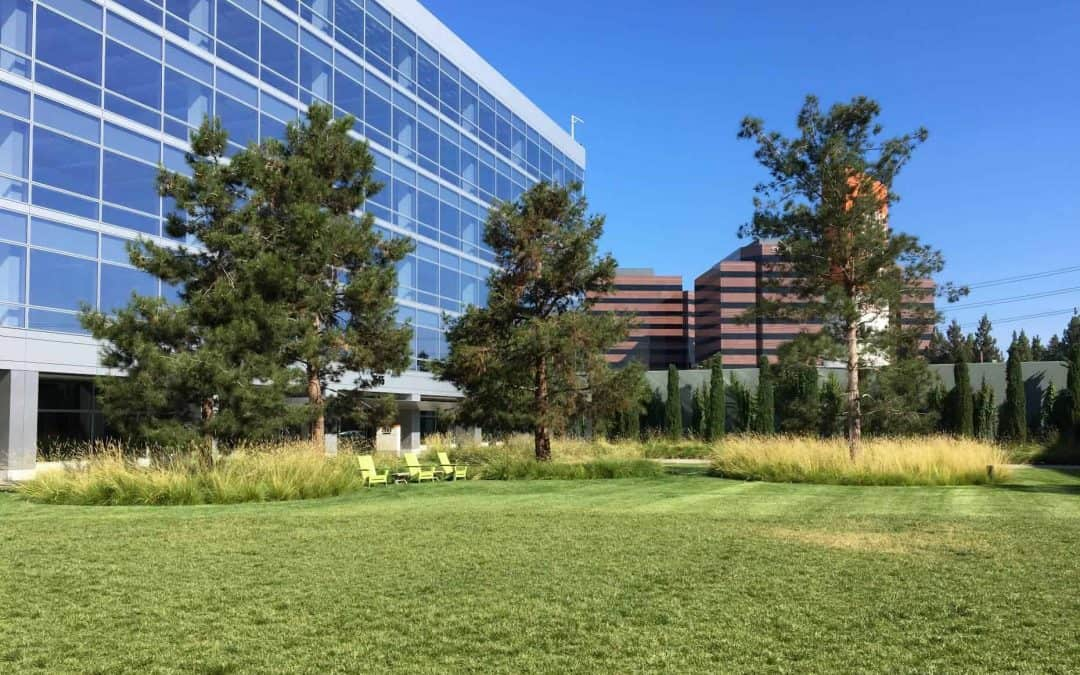 Water Concern Wins 2020 Excellence in Irrigation Award